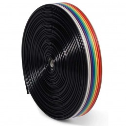 Câble Plat 10 Fils 6m